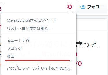 tweetrep_1.jpg